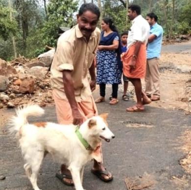 Un perro salvó a una familia de las inundaciones en la India