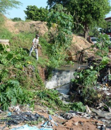 Asunción: Más de 26.000 kilos de basura fueron recogidas de casas abandonadas en la última semana