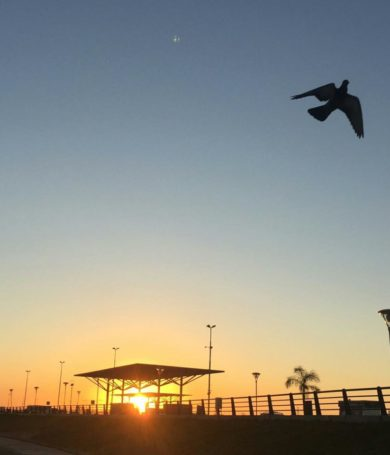 Viernes fresco a cálido y soleado, anuncia Meteorología