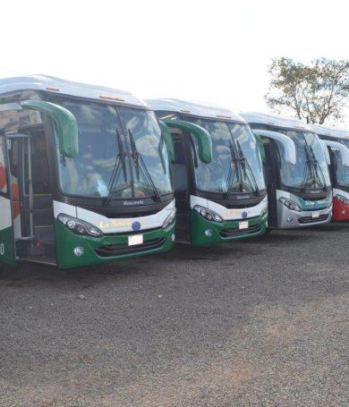 No habrán buses al interior del país en Semana Santa